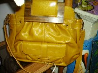 Zina Eva Leather Purse Mustard in color