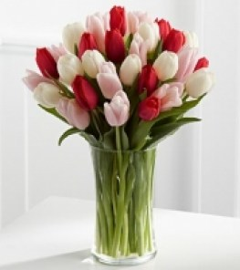tulips_galore_4d39e105796b3_200x200